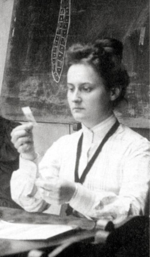 Oktavia Aigner-Rollett bei Institutsarbeiten während ihrer Studienzeit in Graz 1905. Fotografie auf Metall (Bildausschnitt), Steiermärkisches Landesarchiv, Inv.-Nr. A-Aigner Reinhold K10 H108